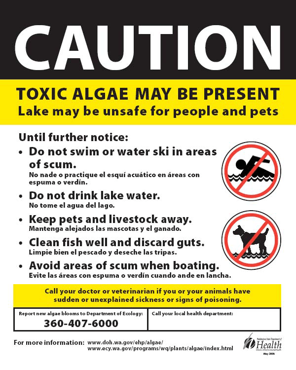 Caution Toxic Algae Sign image